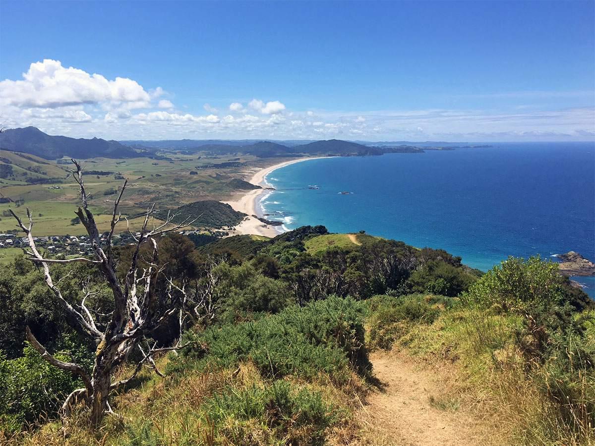 hiking on rangitoto island