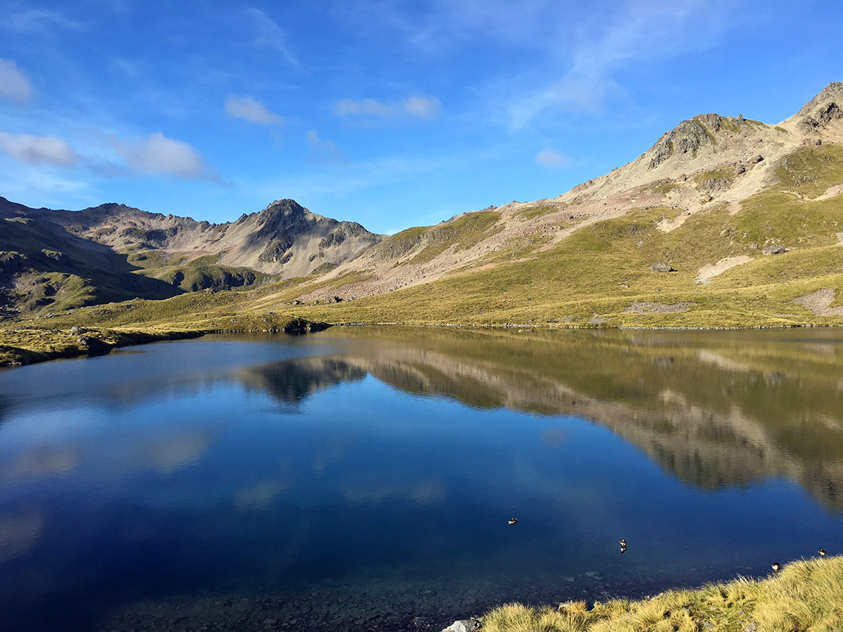 hiking to angelus hut in nelson lakes national park