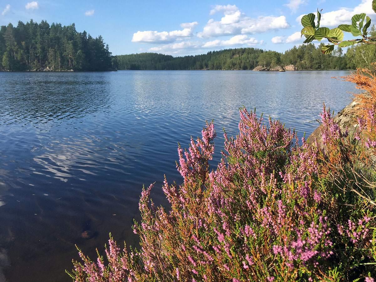 kamperen in zweden kamperen in de zweedse wildernis