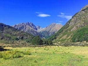 Nieuw-Zeeland week 7: het regent zonnestralen!
