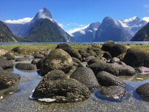 New Zealand week 5: auch my toe and magical Milford
