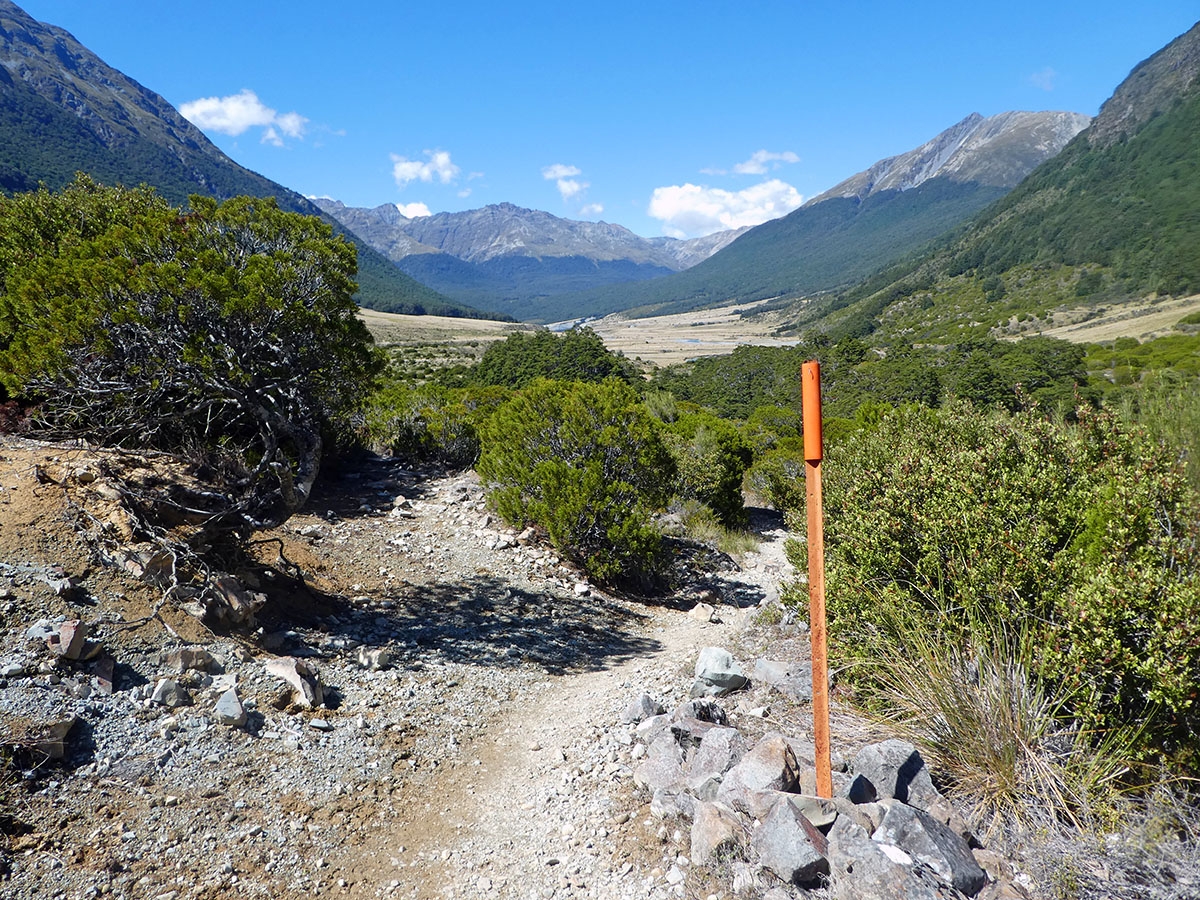 Greenstone Caples Track best hikes in new zealand
