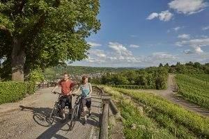 Wijn, kastelen en cultuur op de Neckartal Radweg