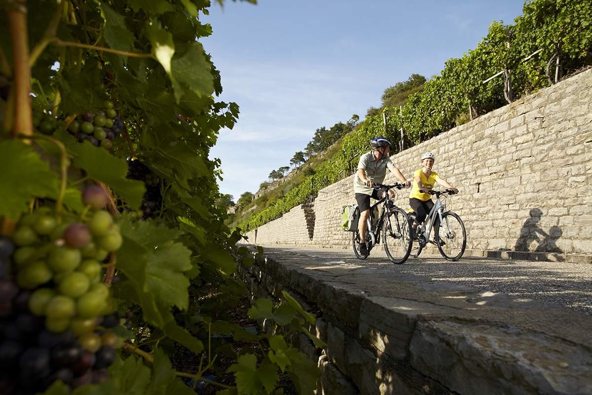 fietsen op de neckartal radweg