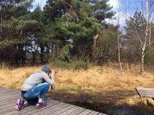 Micro adventure in Hoge Veluwe National Park