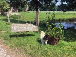 Erfgoedfestival 2018: over de grenzen van Gelderland