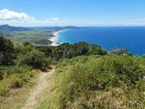 Wandelen in Whangarei en hoe ik daar verdwaalde