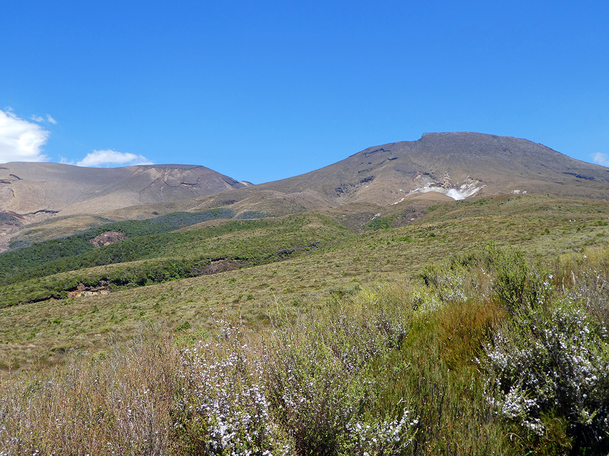 hiking tongariro alpine crossing