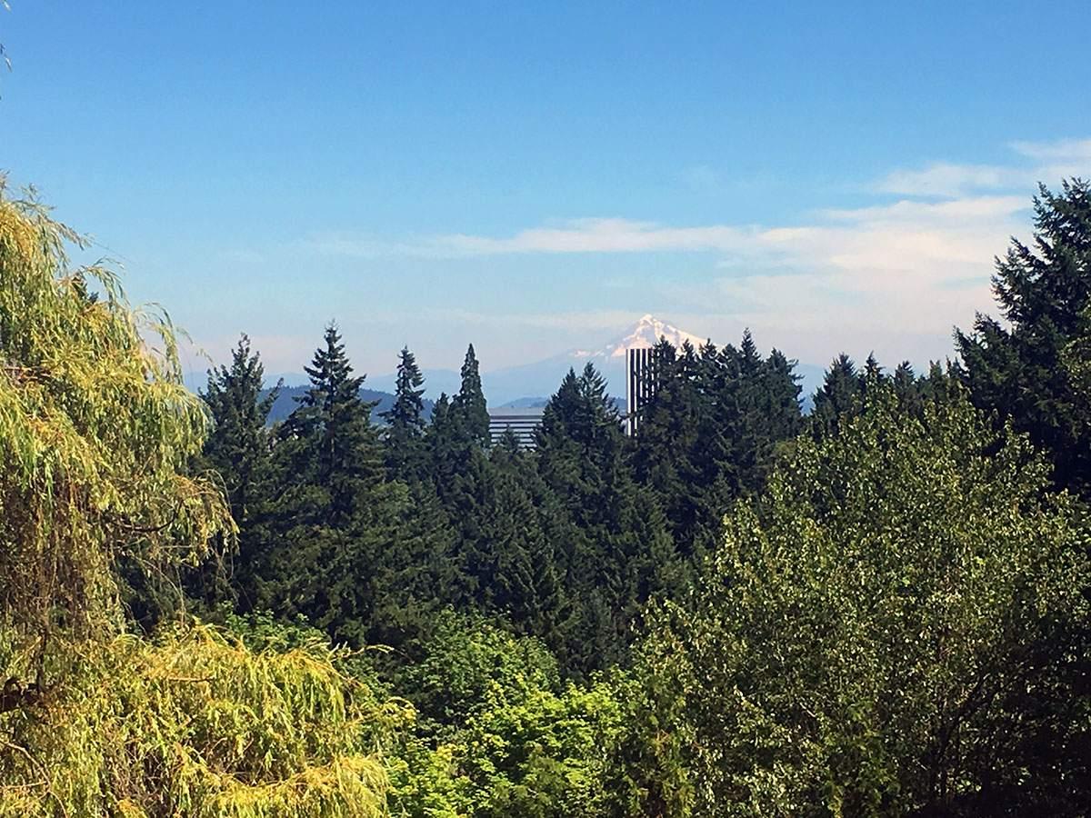 portland mount hood view