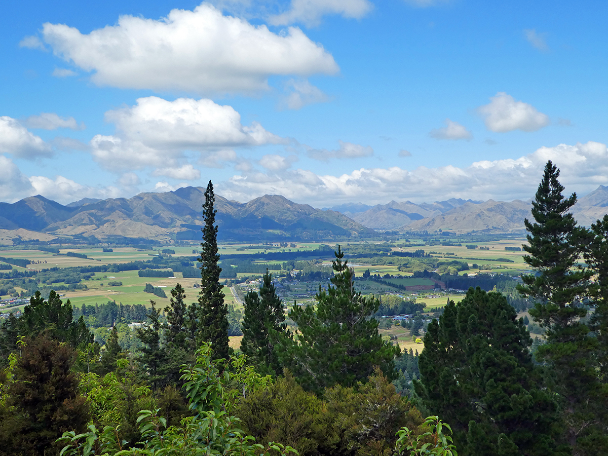 things to do in hanmer springs conical hill walk