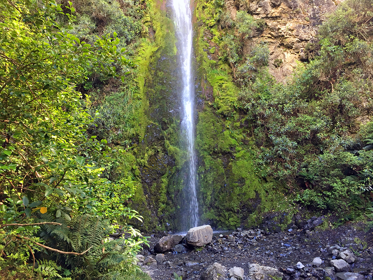 things to do in hanmer springs waterfall walk