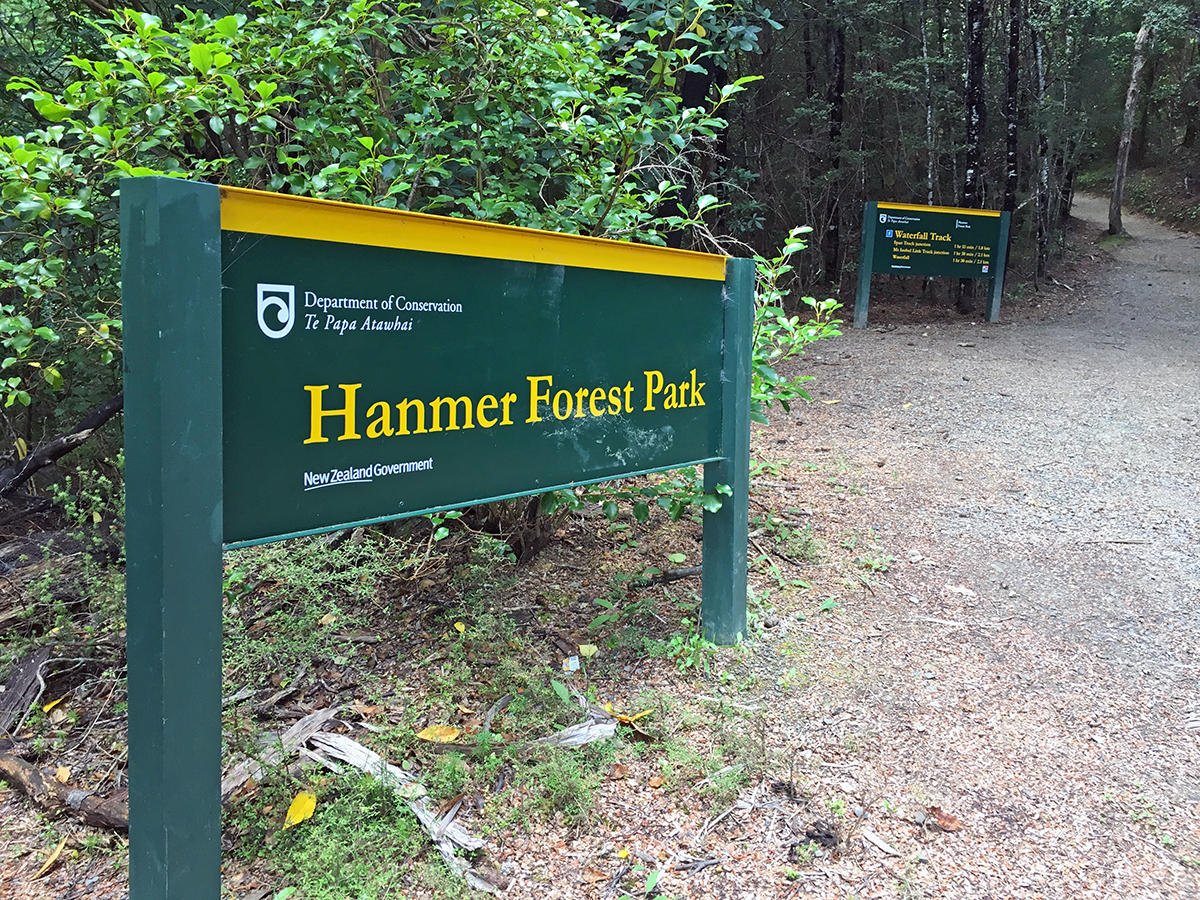 things to do in hanmer springs hanmer forest park