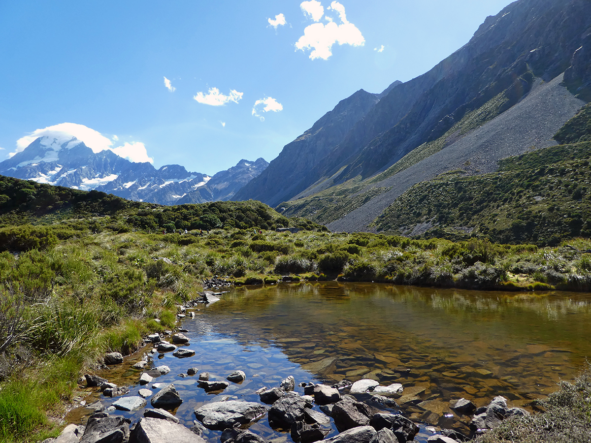 Alpine Tarn Mount Cook National Park