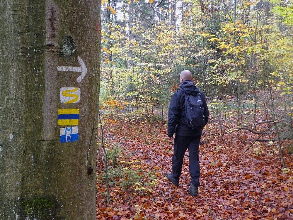 The Goldsteig in Germany