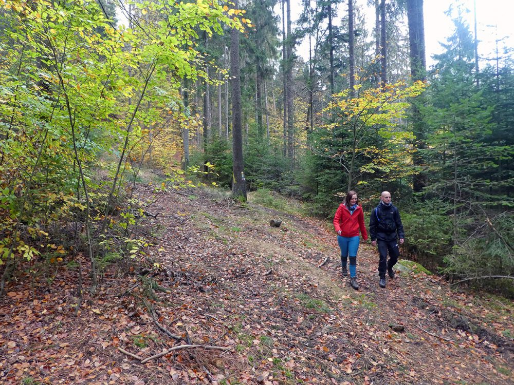 hiking the goldsteig