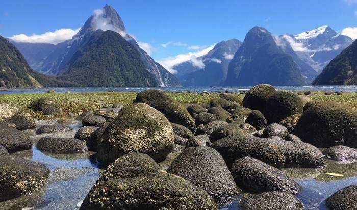 Reizen in Nieuw-Zeeland