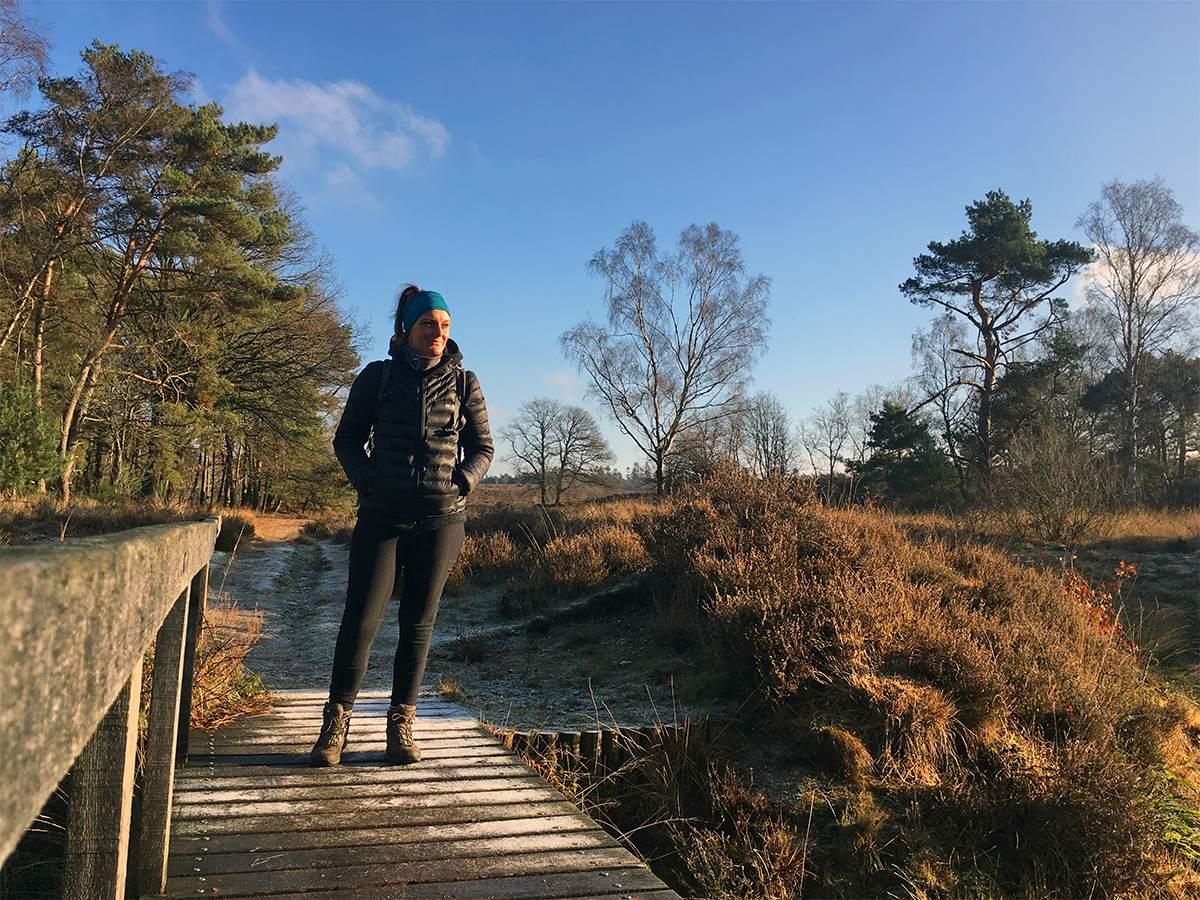 wandelroute oosterbeek - wolfheze