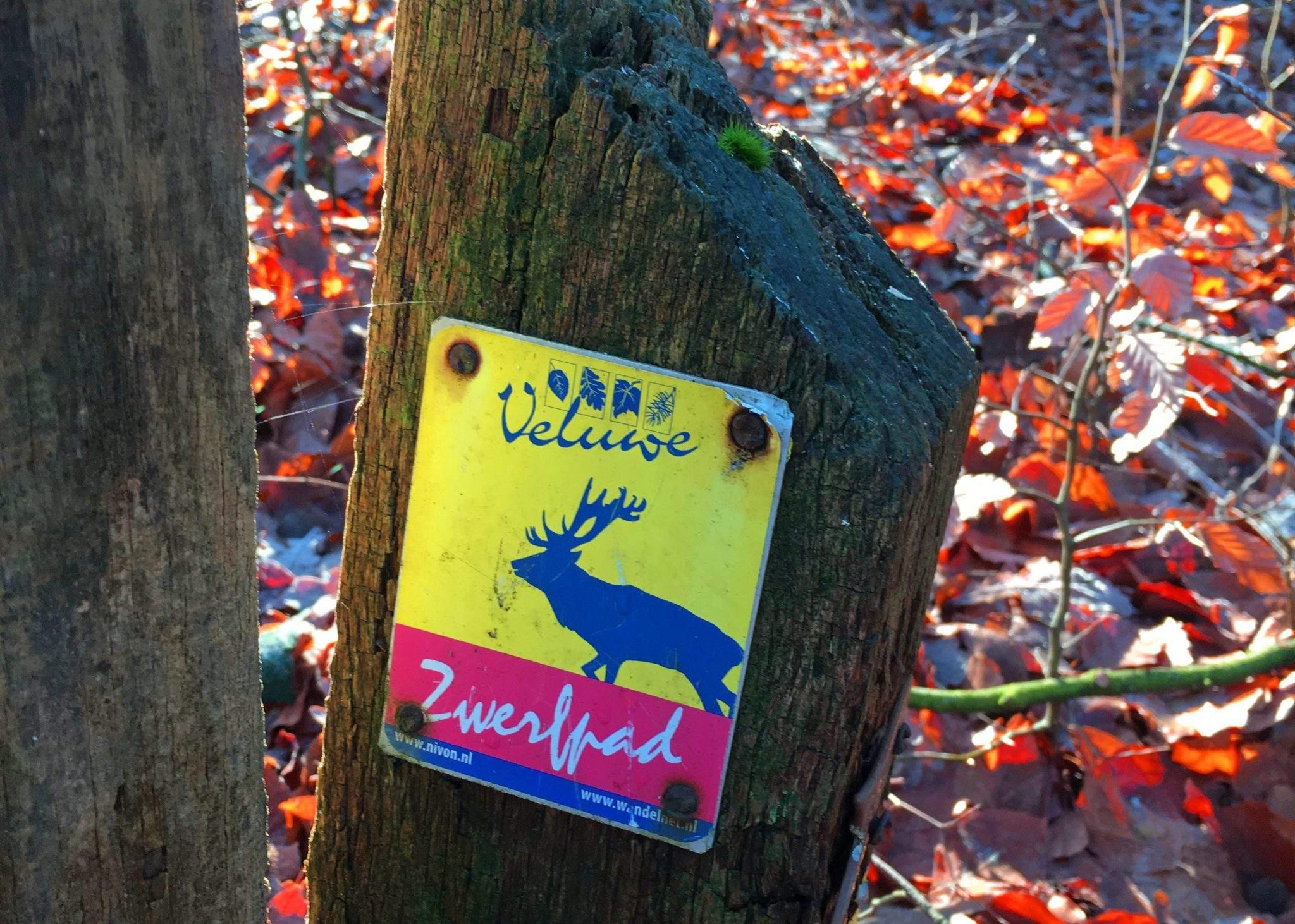 wandelroute oosterbeek wolfheze