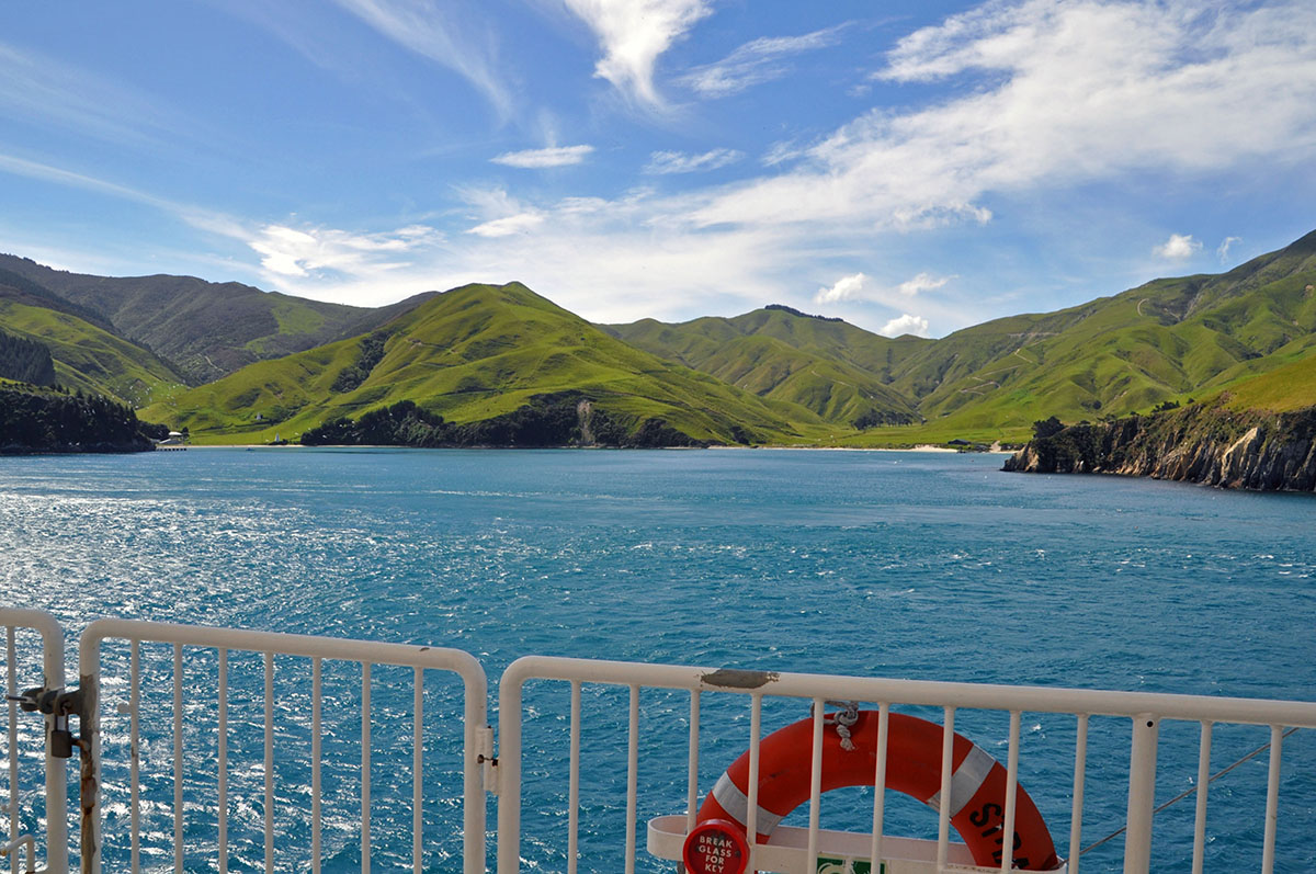 ferry to the south island travel in new zealand