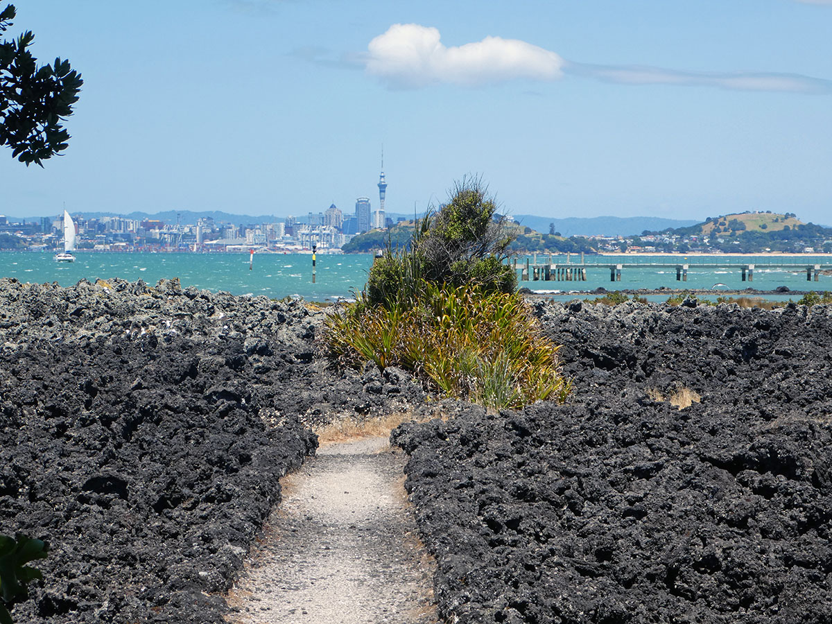 travel in new zealand on rangitoto island
