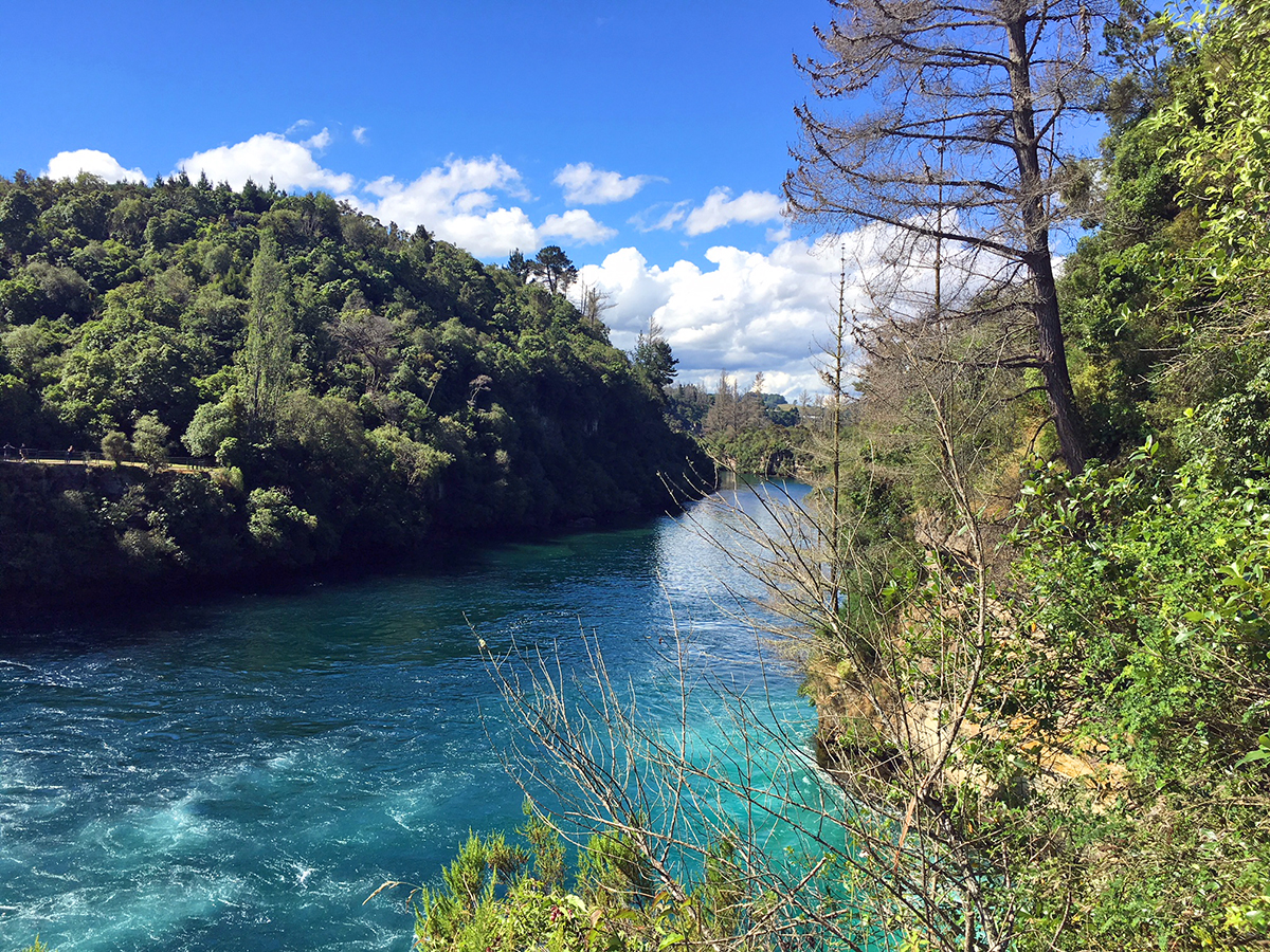travel in new zealand