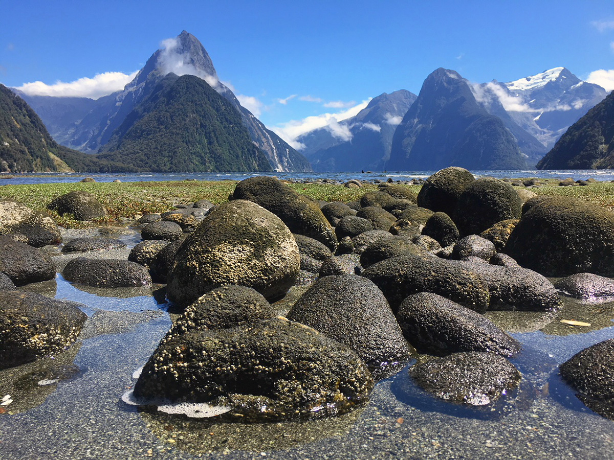 mitre peak in Milford Sound