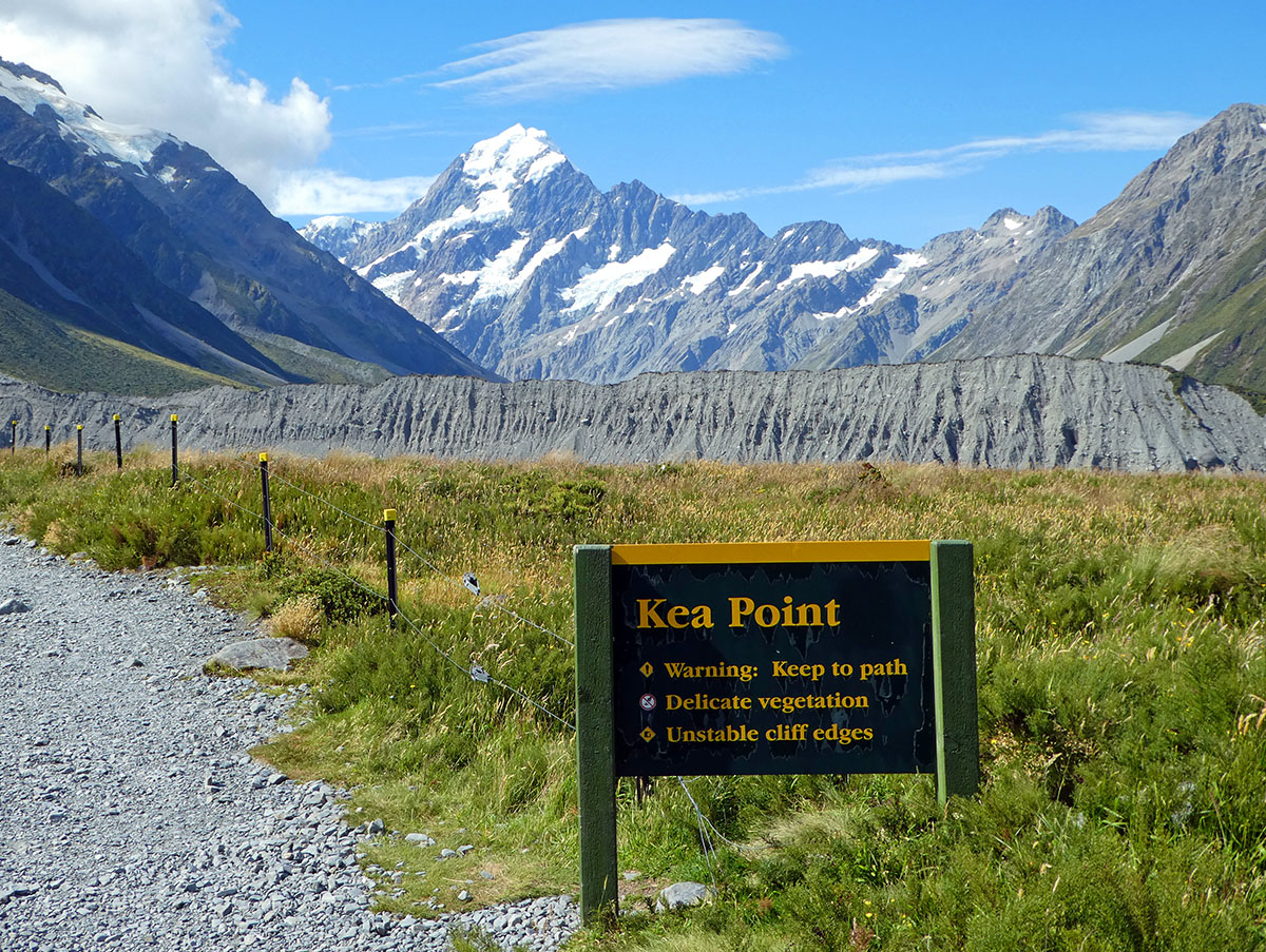 Kea Point Track Mt Cook walks