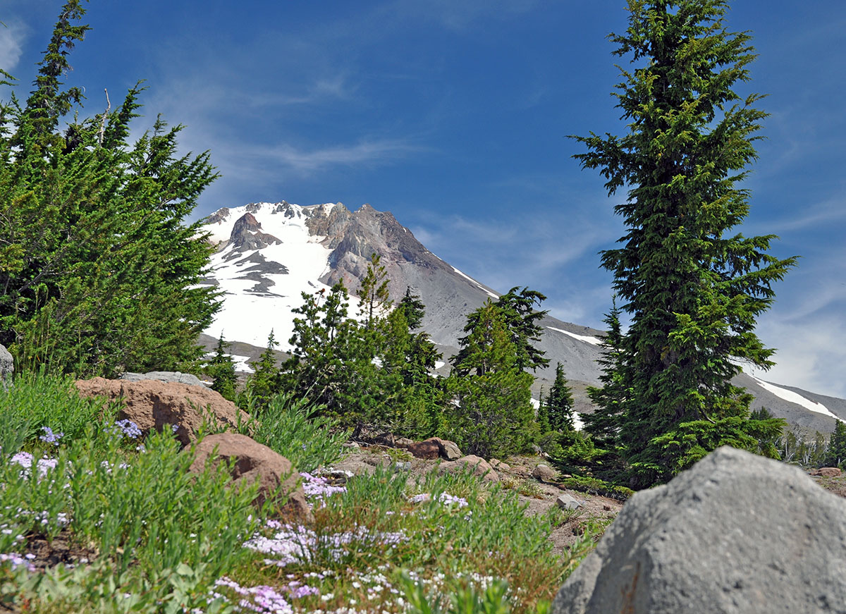 Mount Hood in Oregon