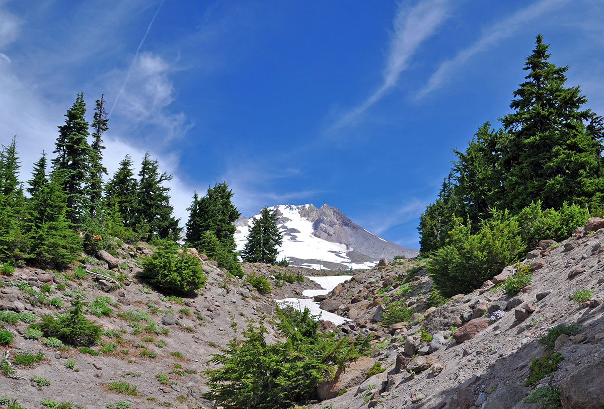 Mount Hood from the PCT