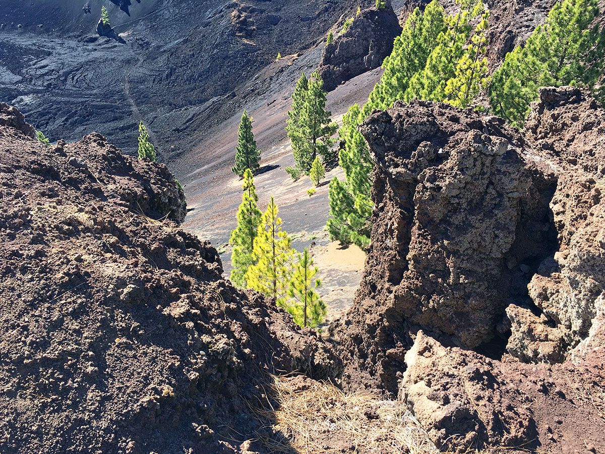 Ruta de los Volcanos Wandelen op La Palma wandelroutes