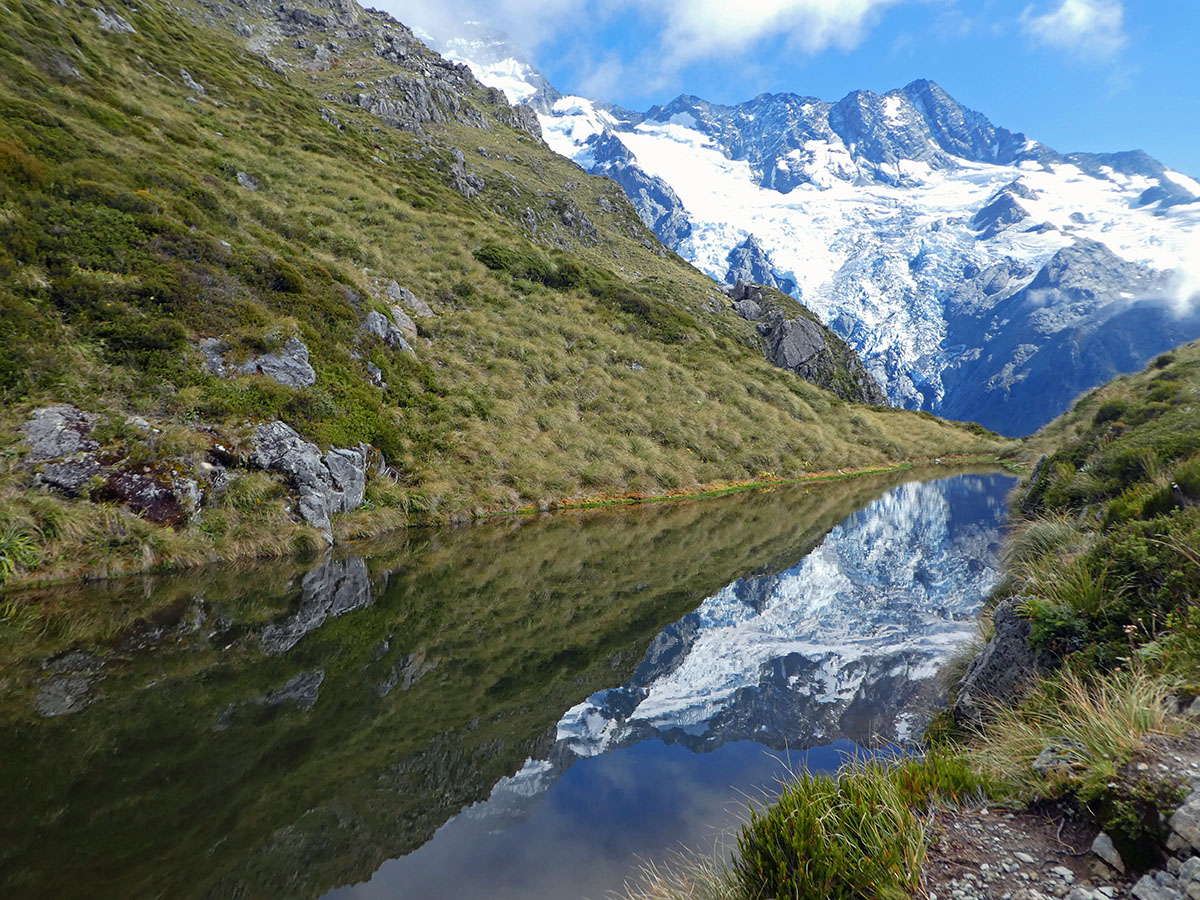 sealy tarns mt cook walks