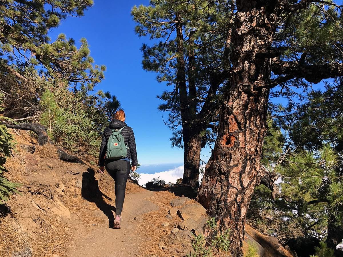 Pico de la Nieve wandelen op La Palma