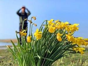 Wandelen op de Veluwe: 4 mooie voorjaarswandelingen