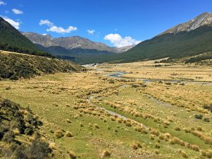 Greenstone Caples Track: a great alternative for The Routeburn Track