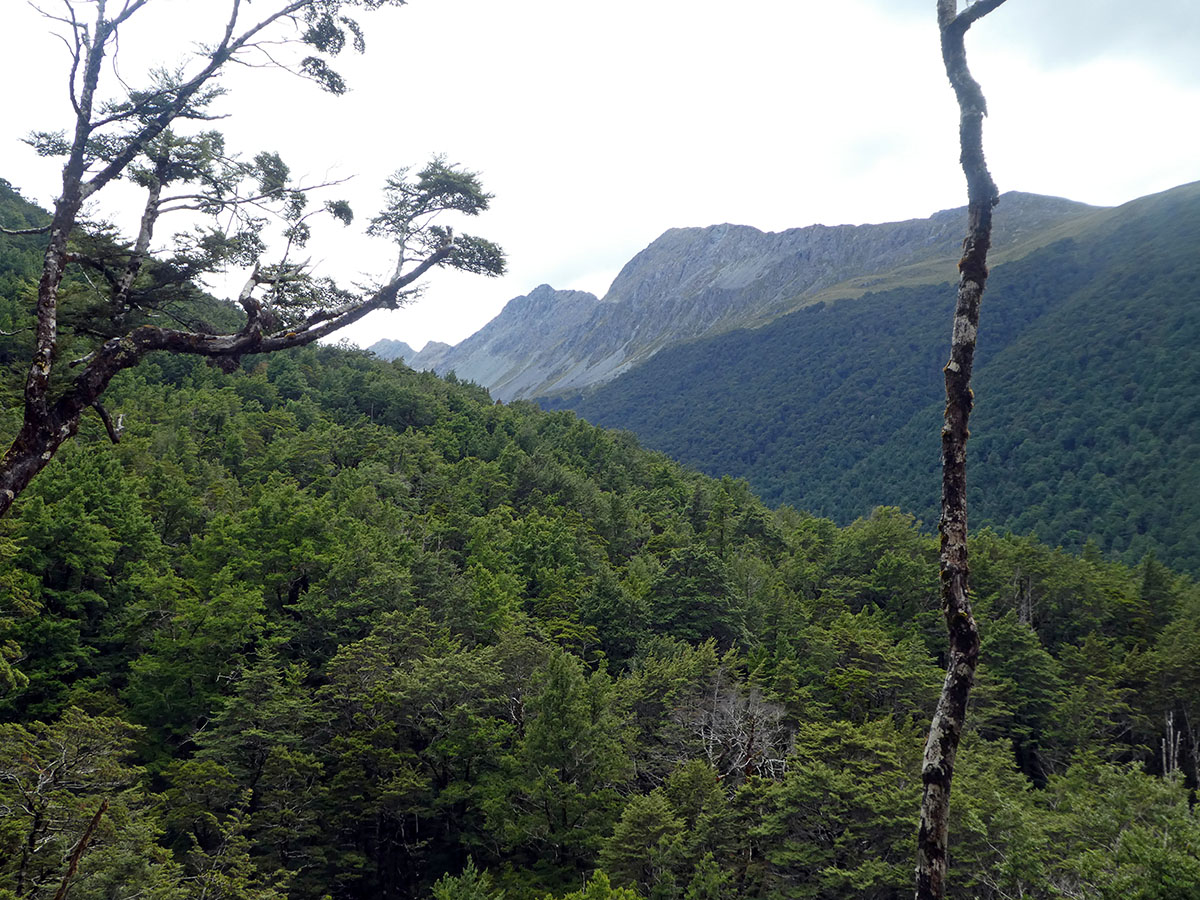 Caples Valley