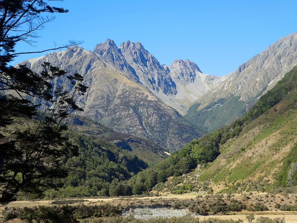Greenstone Caples Track Caples Valley 2