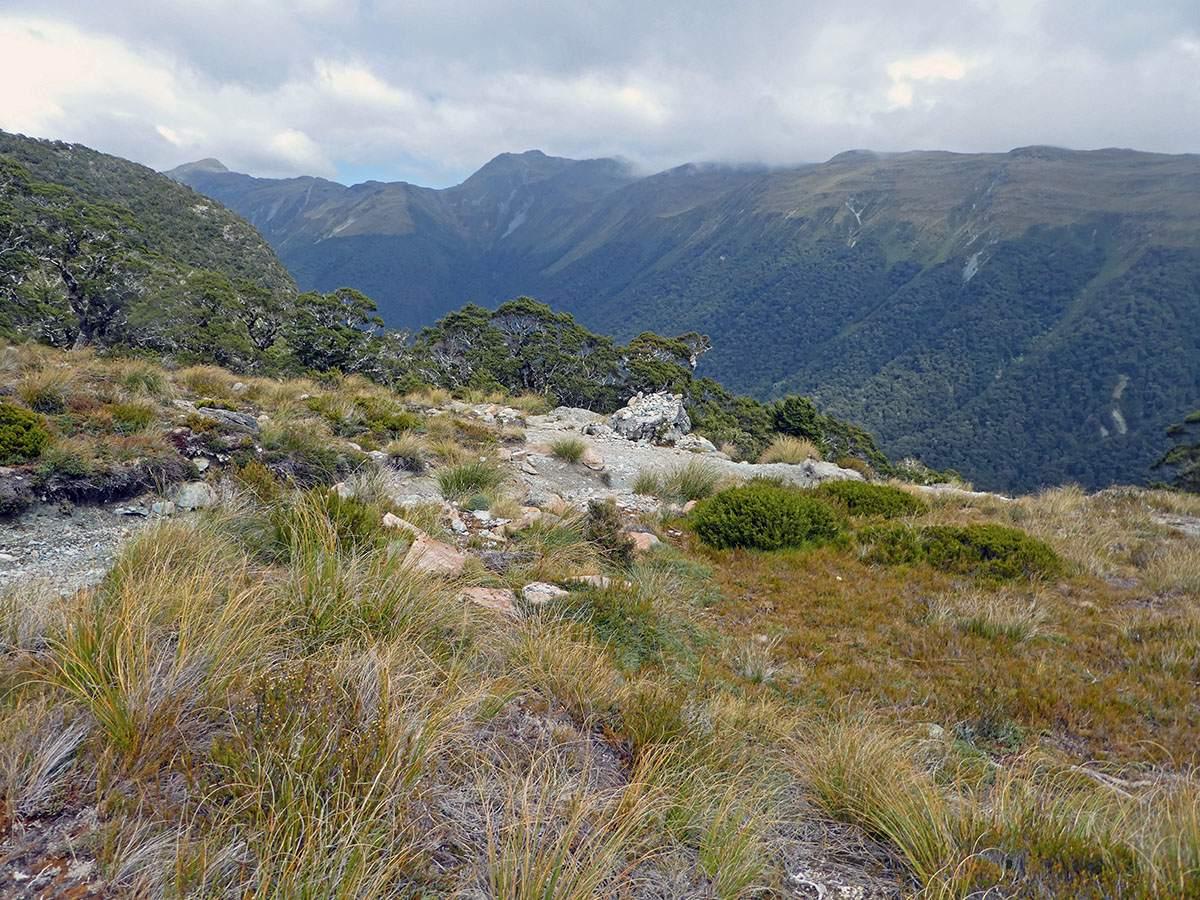 McKellar Saddle viewpoint