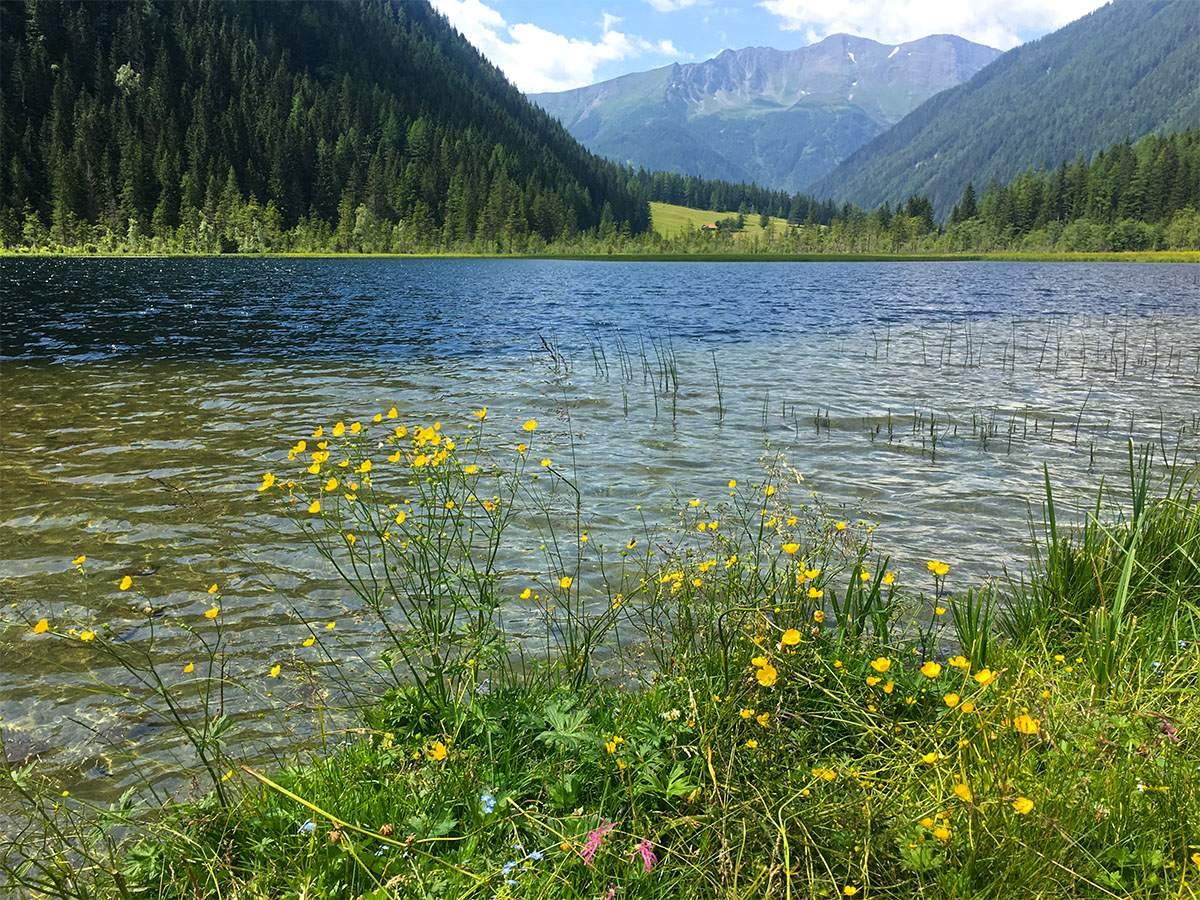 Stappitzer See Alpe Adria Trail