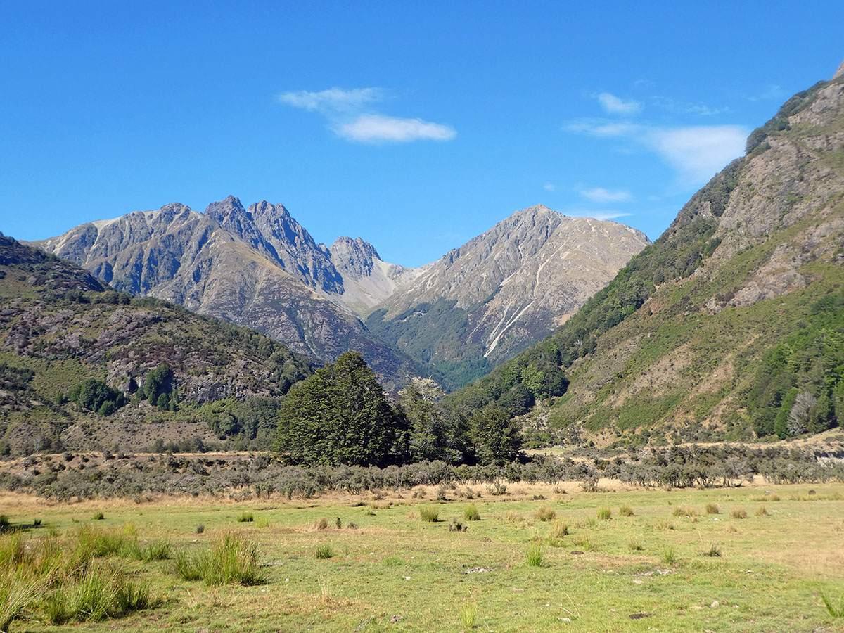 Greenstone Caples Track Caples Valley