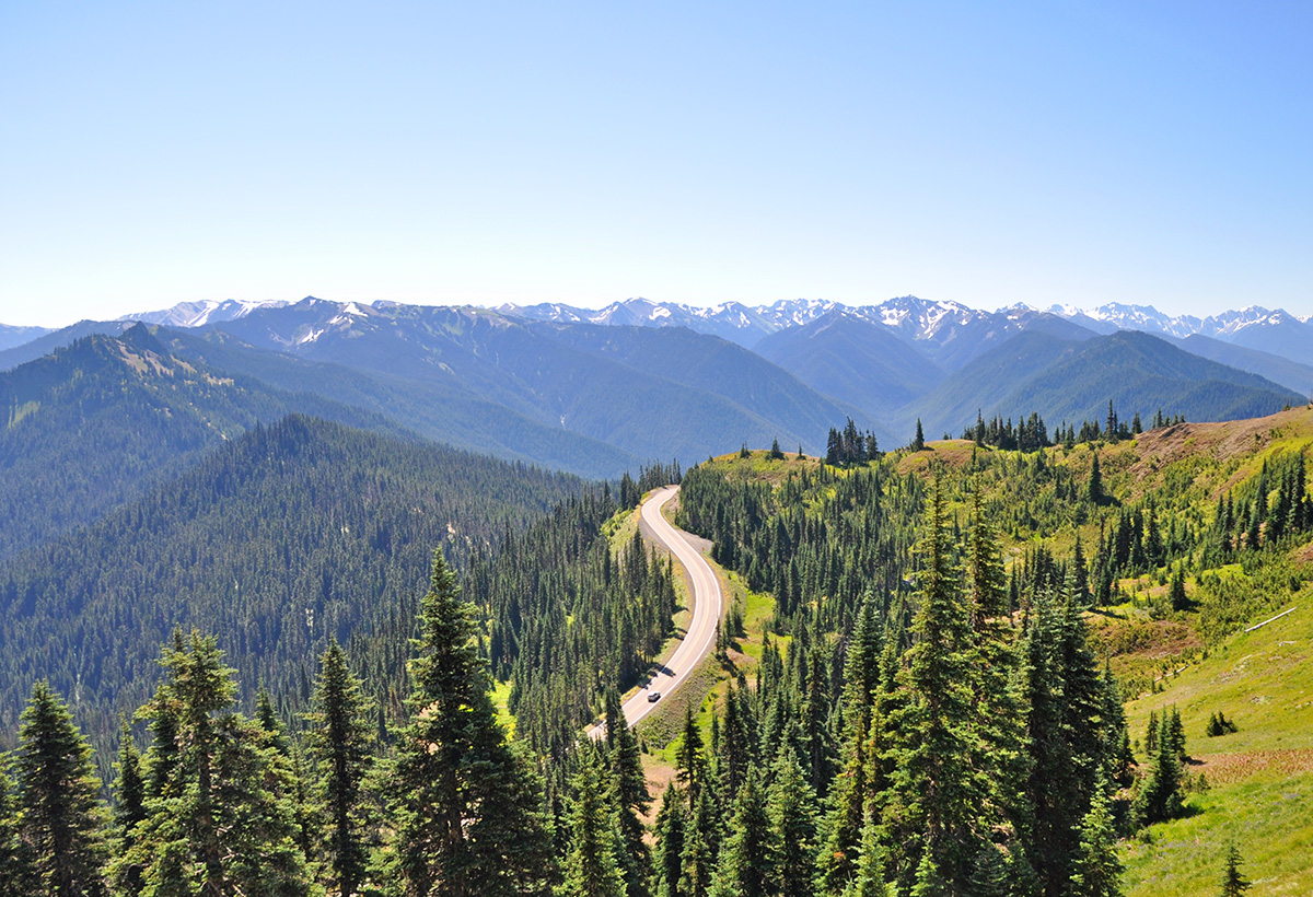 Hurricane Ridge road
