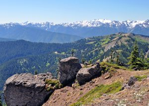 Olympic National Park: things to do and travel tips!