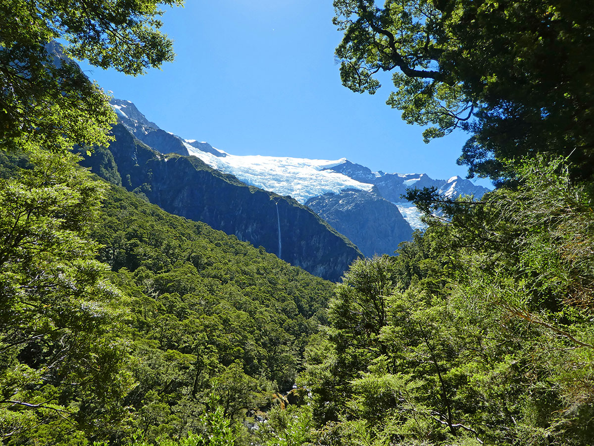 Rob Roy Glacier first lookout