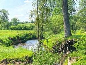 Wandelen Zuid-Limburg: de mooiste wandelingen vanuit Landal Hoog Vaals