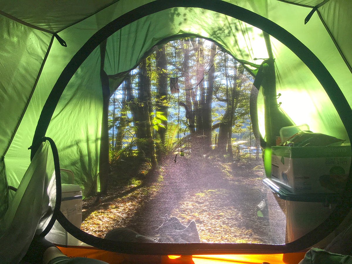 Camping in Fiordland National Park