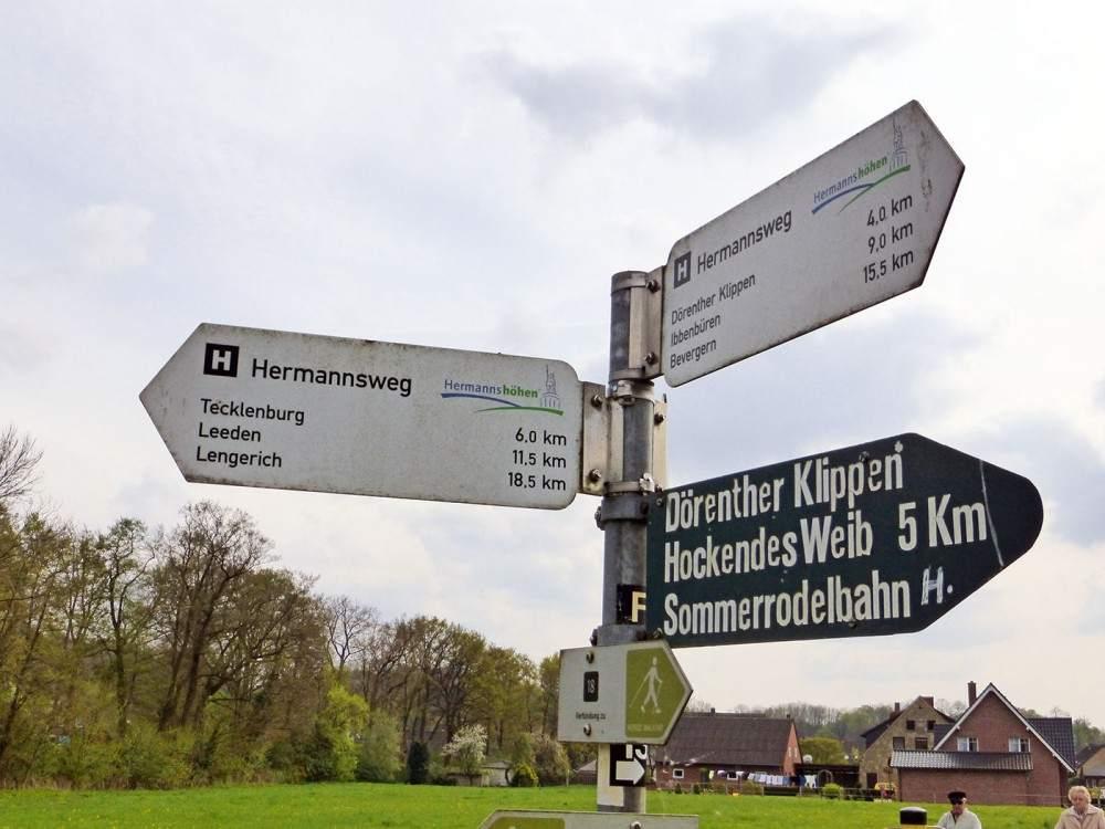 Wandelen in het Teutoburgerwoud