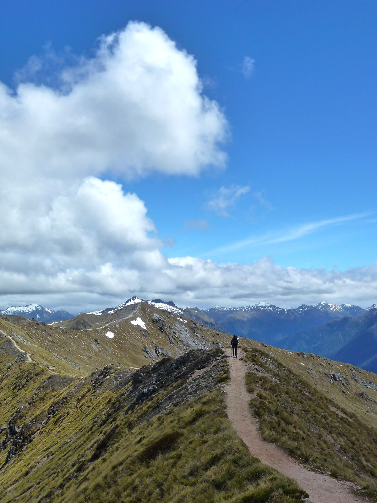 Kepler Track Fiordland NP New Zealand