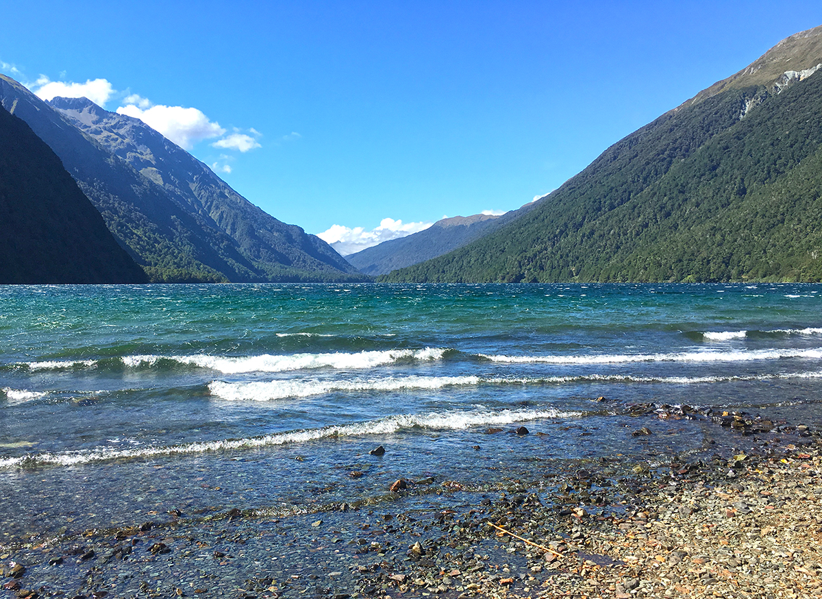 Lake Gunn Nature Walk