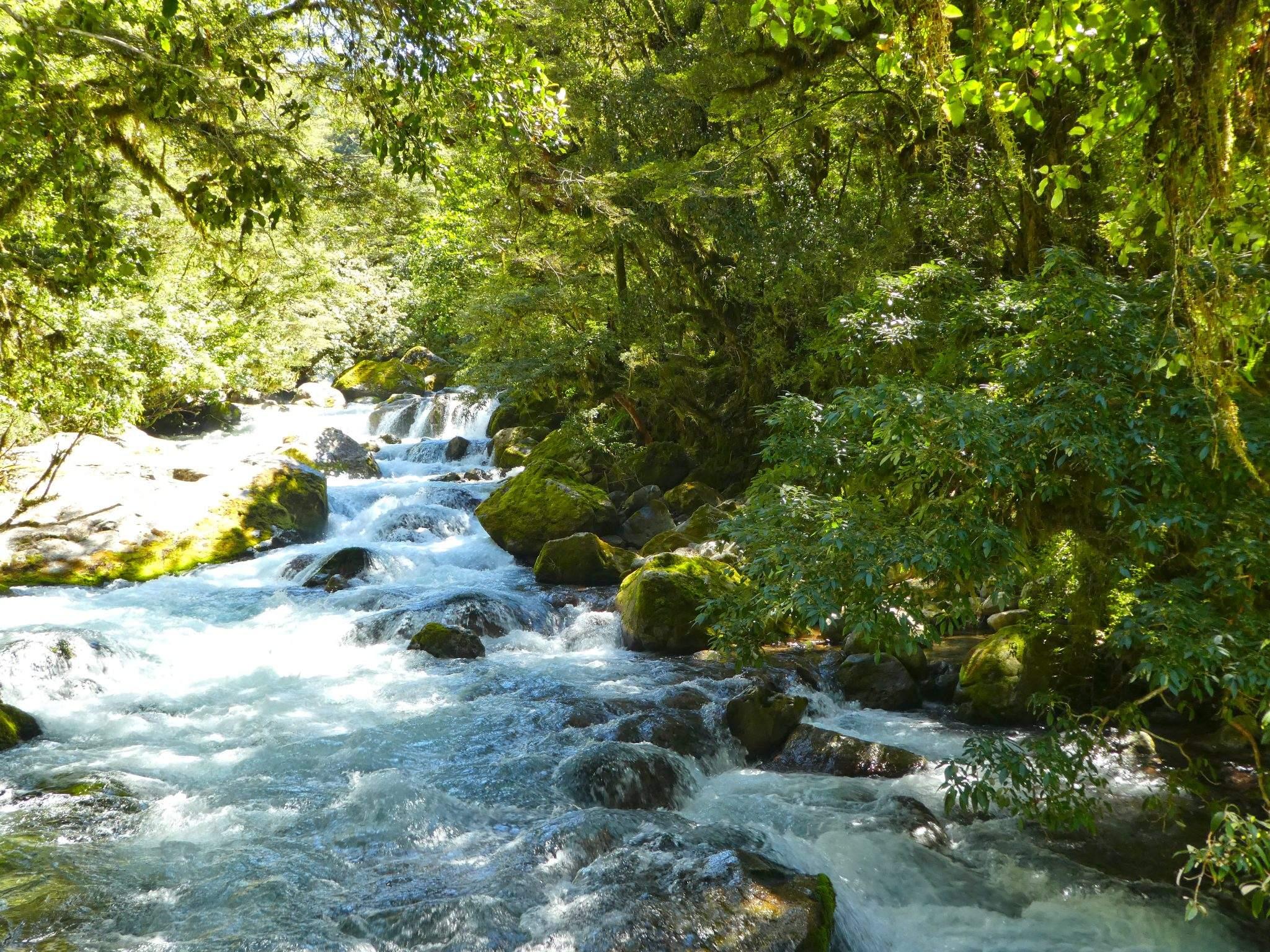 Lake Marian Falls Fiordland National Park New Zealand