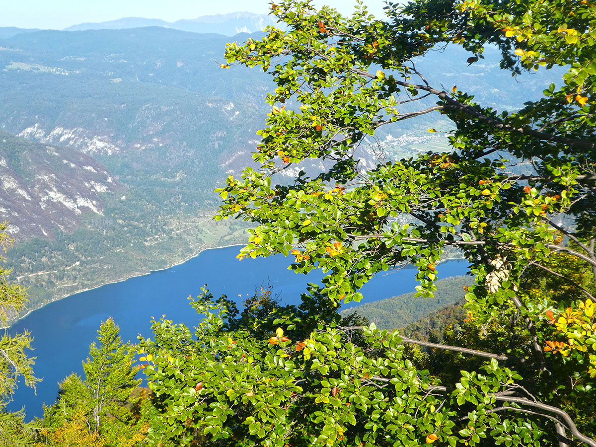 Meer van Bohinj Lake