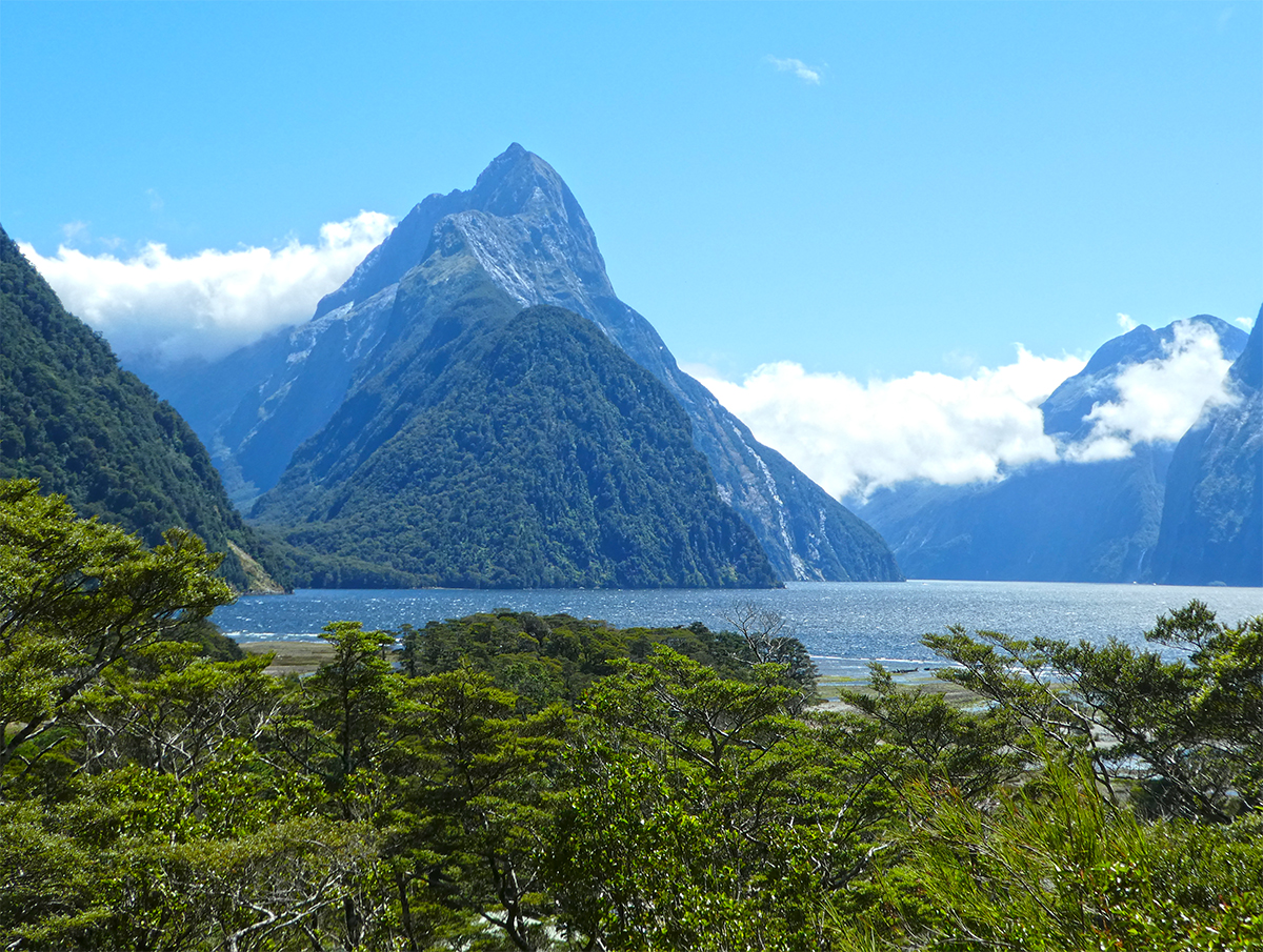 Milford Sound Lookout walk